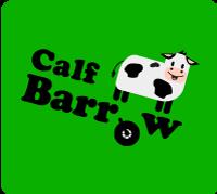 Calf-Barrow